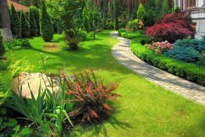 Growing an Edible Landscape For Beginning Gardeners -